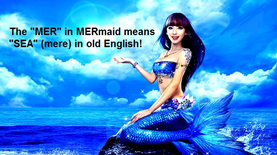 Mer-Mere-In-Mermaid-Means-Sea-In-Old-English-Strange-Or-What